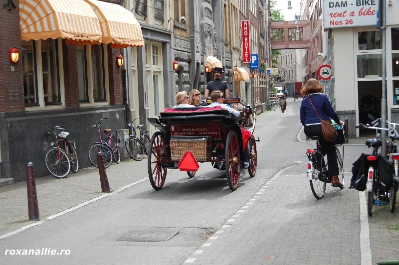 Amsterdamul_meu_galerie_23.jpg