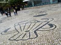 Calcada_portugheza_galerie_16.jpg