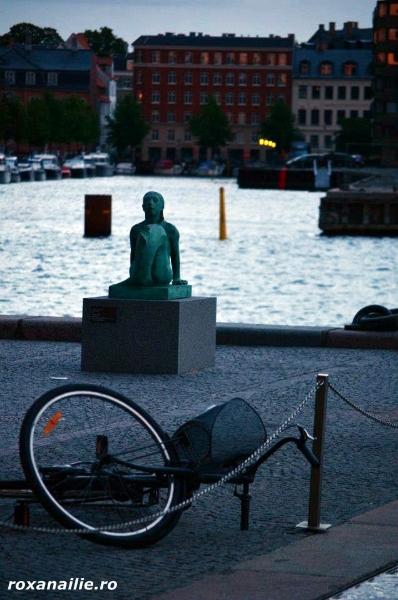 Copenhaga_regalul_scandinav_galerie_6.jpg