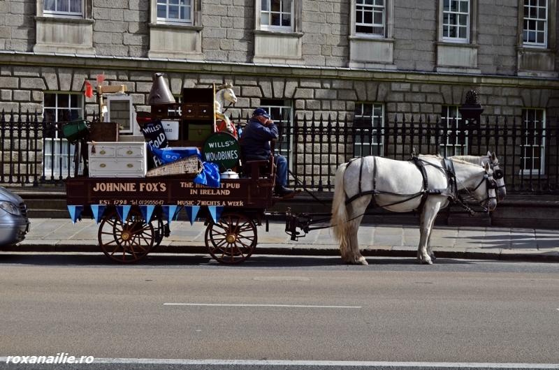 Dublin_pint_galerie_5.jpg