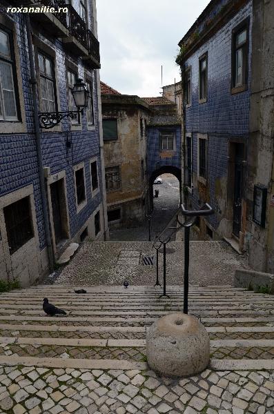 Lisabona_raiul_fotografiei_galerie_24.jpg