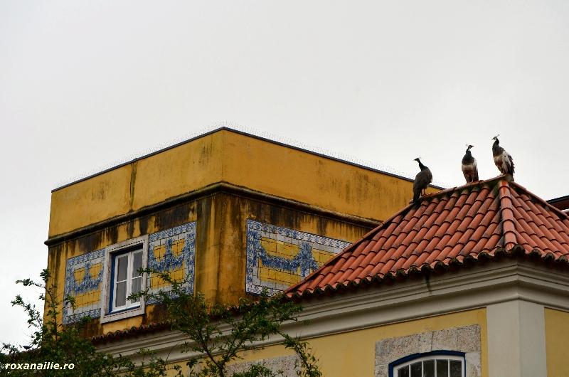 Panorama_Lisabonei_galerie_8.jpg