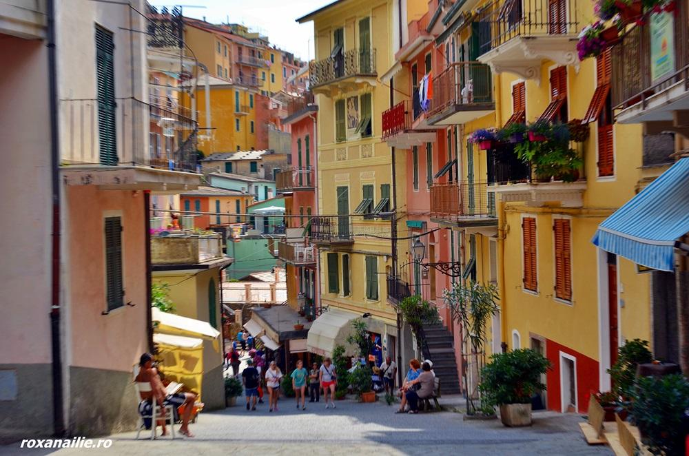 Strada tipică și colorată din Cinque Terre