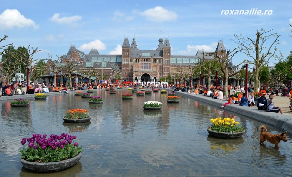 Rijksmuseum, lalele, turiști și-un câine