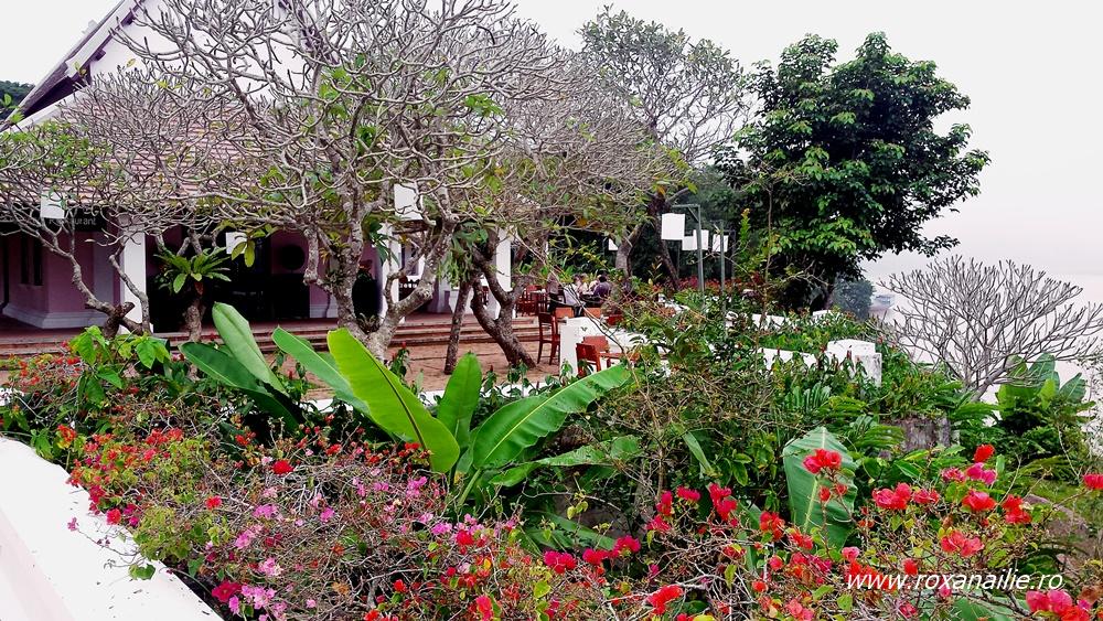Vegetația luxuriantă din curtea hotelului-palat este emblematică pentru Laos