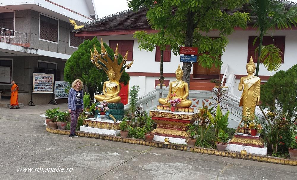 Mai stau și sobră, când trece câte un călugăr budhist :)