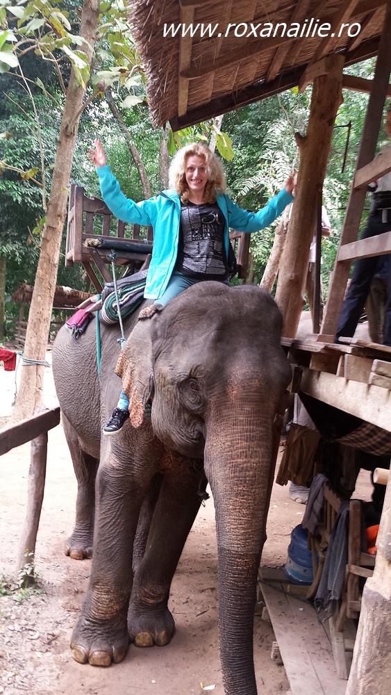 Fericire și elefant. În țara celor un milion de elefanți. Asta înseamnă Laos în traducere!