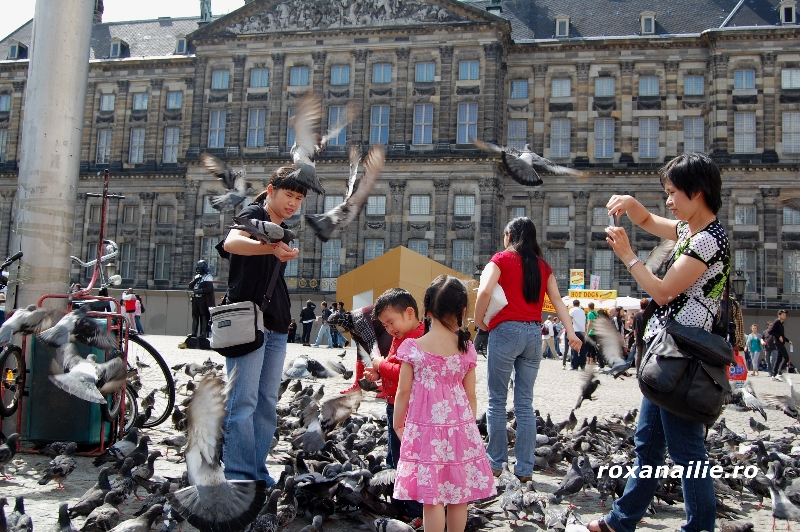 Amsterdam_ the_place_galerie_22.jpg
