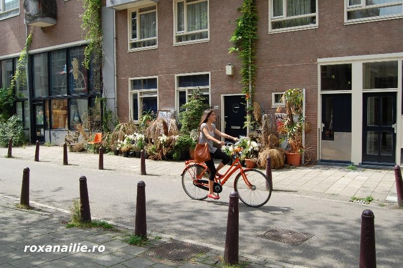 Amsterdamul_meu_galerie_8.jpg