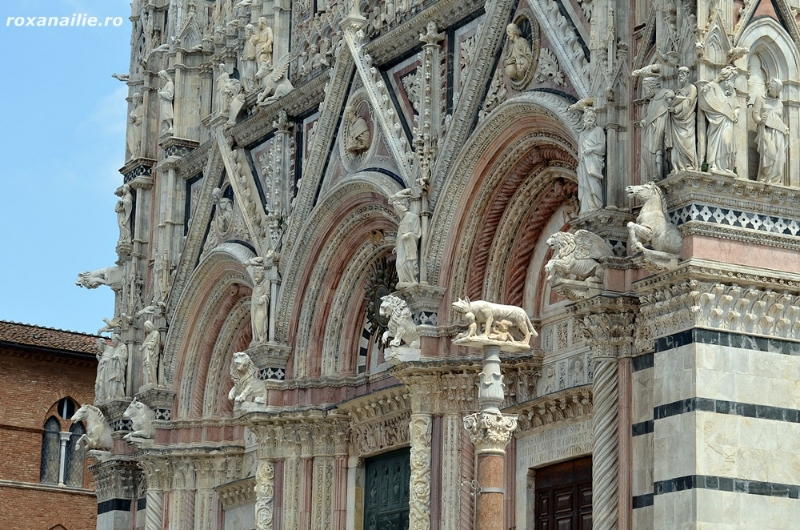 Siena_orasul_Domului_galerie_b5.jpg